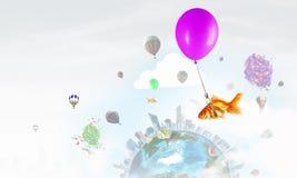 Mouche de poisson rouge sur le ballon Photo libre de droits
