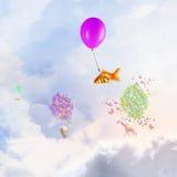 Mouche de poisson rouge sur le ballon Images stock