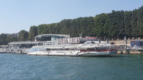 mouche Parigi del bateau Immagine Stock