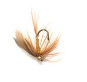 Mouche pour pêcher sur le fond blanc Photo stock