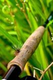 Mouche Rod avec la mouche sur le traitement 1 Photo stock