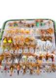 Mouches sèches de détail de boîte de mouche Photographie stock libre de droits