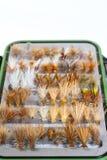 Mouches sèches de détail de boîte de mouche Images stock