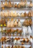 Mouches sèches de détail de boîte de mouche Image stock