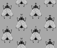 Mouches sur le fond gris Photographie stock libre de droits