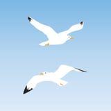 Mouette dans le ciel illustration libre de droits