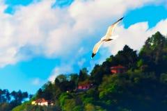 Mouette en vol au-dessus d'une colline verte en ciel bleu nuageux Photographie stock libre de droits