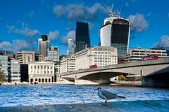Mouette et la ville de l'horizon de Londres Photographie stock libre de droits