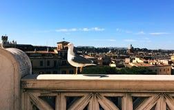 Mouette à Rome Photo stock