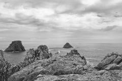 Mouette sur les roches, la Bretagne Images stock