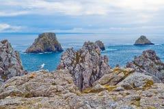 Mouette sur les roches, la Bretagne Images libres de droits