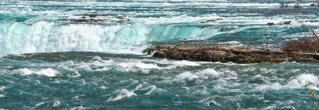 Mouettes au-dessus de la rivière Niagara et des automnes Un certain vol, le bord d'une certaine eau proche sur la rivière Niagara Images libres de droits