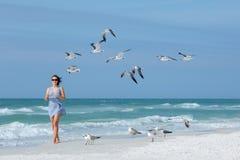 Mouettes de alimentation de jeune femme sur la plage tropicale, la Floride Images libres de droits