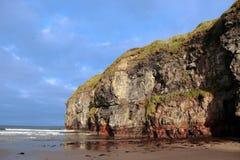 Mouettes de falaise de plage de Ballybunion Photos stock