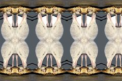 Mouettes et crabe Shell Mosaic photos stock