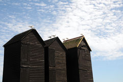 Mouettes sur des huttes de pêche, Hastings photographie stock