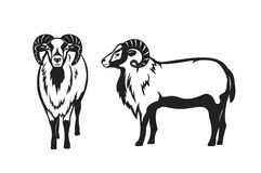 Mouflon sheep vector illustration silhouette Royalty Free Stock Photo