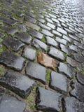 Mouillez de la pierre belge flamande de galet de pluie Image libre de droits
