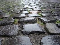Mouillez de la pierre belge flamande de galet de pluie Photos stock
