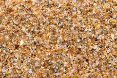 Mouillez le sable multicolore sur la plage dans le jour d'été du soleil Photo stock
