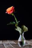 Mouillez rose sur une table en bois Photographie stock libre de droits