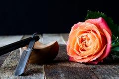 Mouillez rose sur une table en bois Image stock