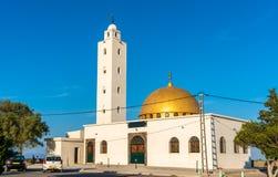 Moula Abdelkader Moul El Mayda i Oran, Algeriet fotografering för bildbyråer