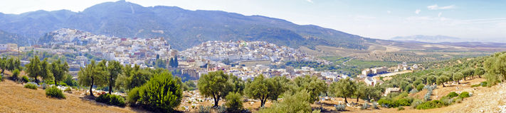Moulay Idriss是最圣洁的镇在摩洛哥。 库存图片