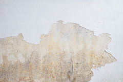 Mould growing on white wall Stock Photo