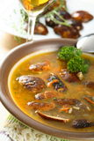 Mould soup with rice Stock Images