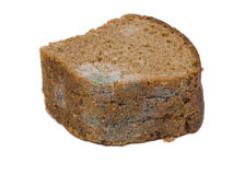 Mould on stale bread Stock Image