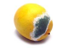Moulded lemon. Molded lemon on a white background Royalty Free Stock Photo