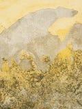 mouldy старая поцарапанная стена Стоковые Изображения