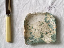 Mouldy Bread. Close-up of a crust of bread covered in fuzzy green and white mould stock photo