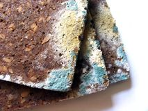 Mouldy bread close up on white background Stock Photography