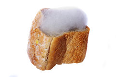 Mouldy bread. Isolated on white Stock Photography