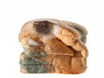 Mouldy bread isolated on white background. Stock Image