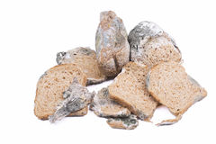 Mouldy bread Stock Images