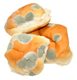 Mouldy Bread Rolls Stock Image