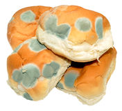 Mouldy Bread Rolls Royalty Free Stock Photos