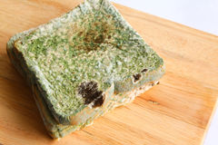 Mouldy bread - Series 2 Stock Photo