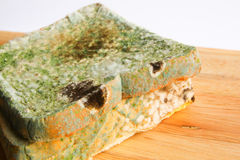 Mouldy bread - Series 3 Royalty Free Stock Photos