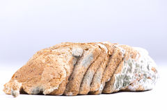 Mouldy bread. Slices of a mouldy bread Royalty Free Stock Photo