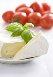 Mouldy cheese with basil leaves. Stock Photo