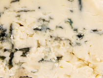 Mouldy cheese texture Royalty Free Stock Images