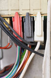 Mouldy electric cables. Stock Image