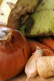 Mouldy organic vegetable Stock Photos