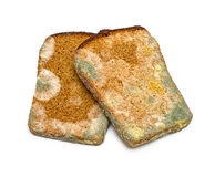 Mouldy rye bread. Two slices of mouldy rye bread isolated on white background Stock Photography