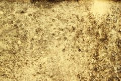 Mouldy wall Royalty Free Stock Photos