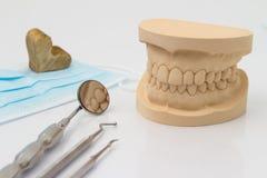 Moule dentaire avec des outils et un masque protecteur Photographie stock libre de droits